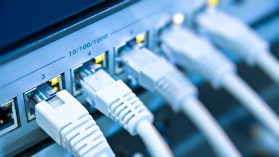 Des câbles branchés dans une station réseau.