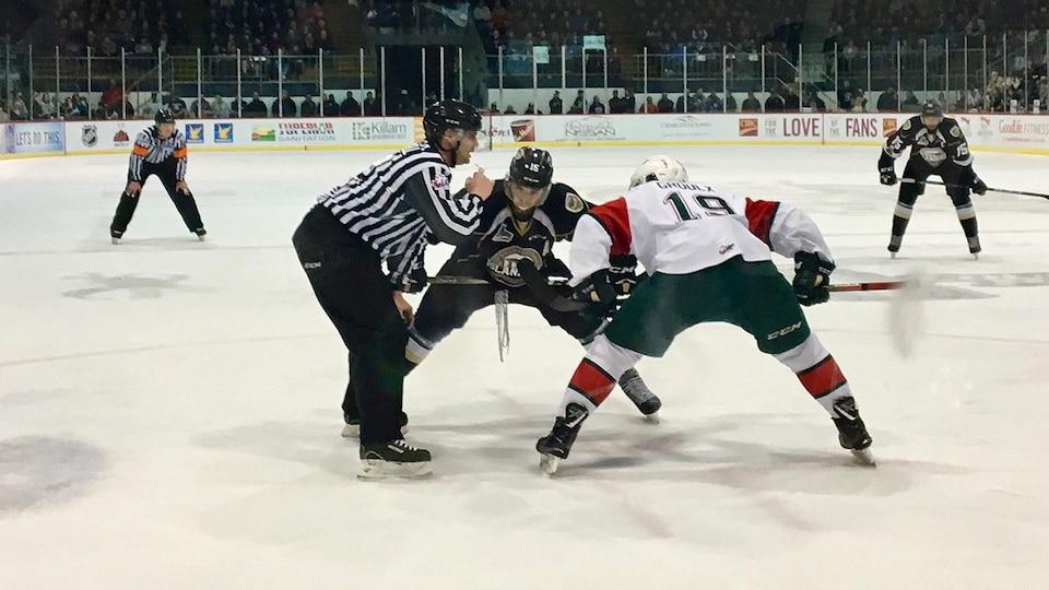 Les Islanders ont balayé leur série contre les Mooseheads.