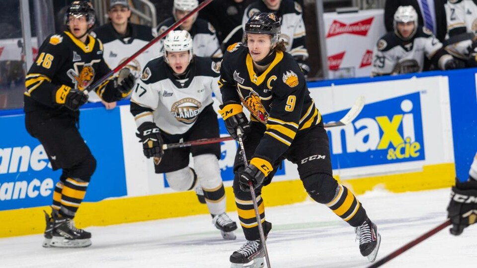Plusieurs joueurs de hockey de deux équipes adverses sur une patinoire