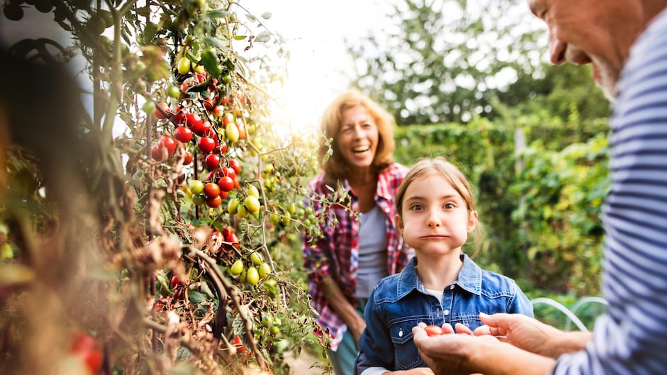 Un couple de personnes âgées partage du bon temps avec leur petite fille dans un jardin communautaire.