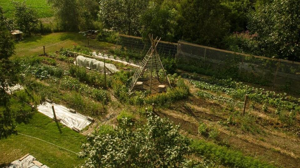 Le potager du Jardin des vie-la-joie.