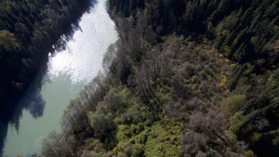 Les arbres et arbustes d'un jardin forestier aménagé sur le site d'un ancien village autochtone a survécu pendant 150 ans à l'invasion de la forêt de conifère qui l'entoure.