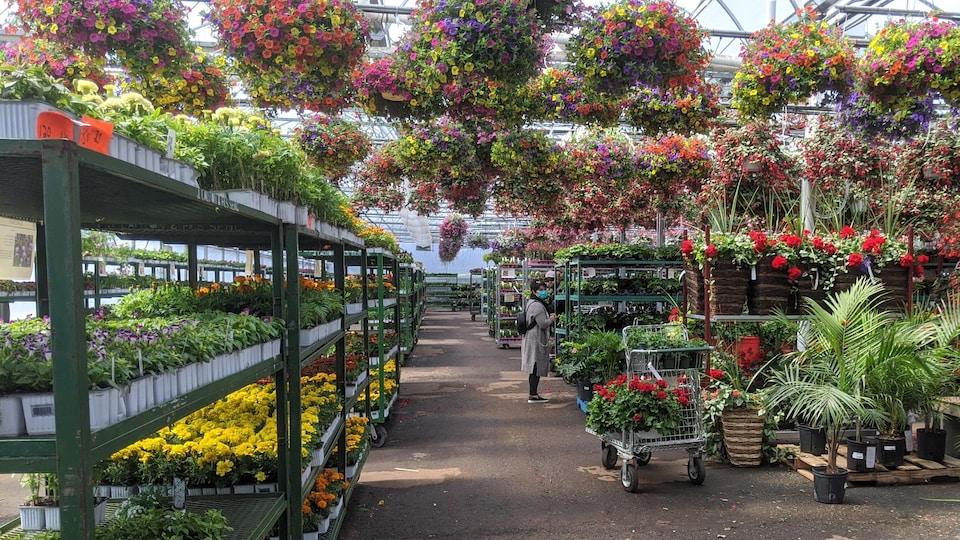 Une femme masquée dans une allée de fleurs d'un centre de jardinage.