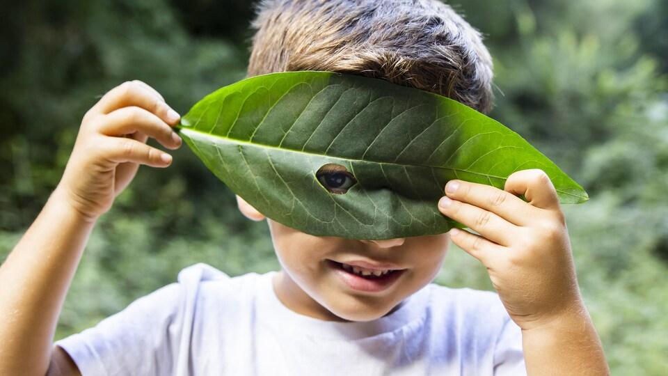 Un garçon regarde à travers un trou dans une feuille.