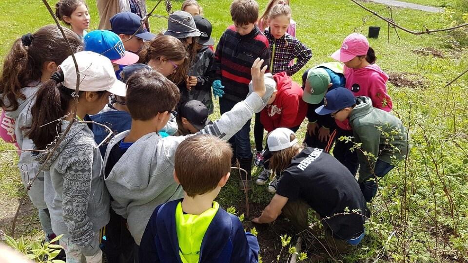 Des jeunes plantent un arbre.