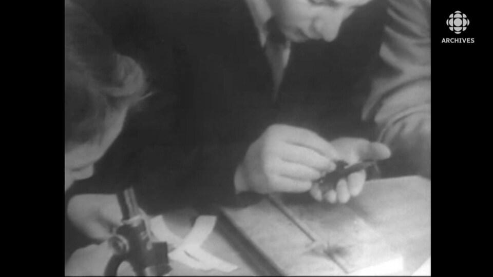 Un garçon épingle une feuille d'arbre pendant qu'un autre se sert d'un microscope.