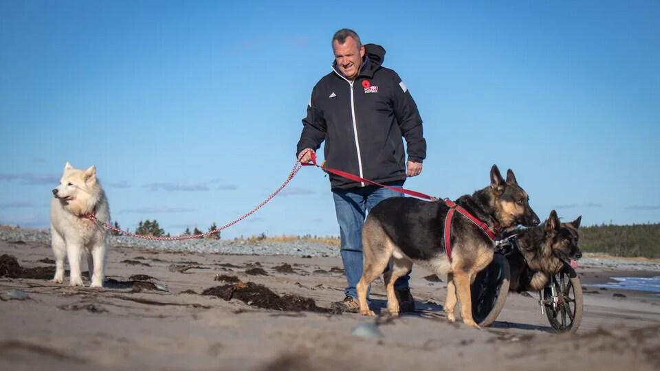 Joe Taplin se promène sur une plage avec ses trois chiens.