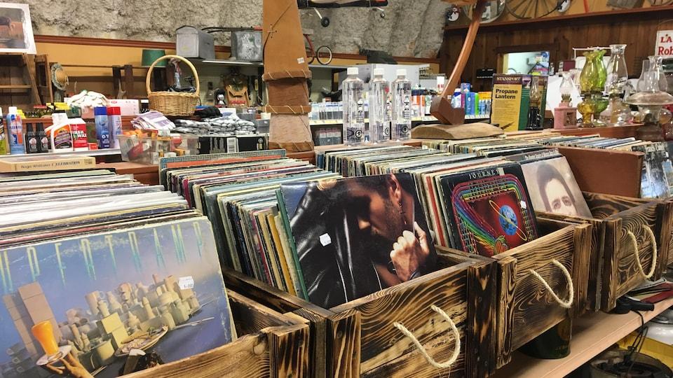 Des rangées de disques vinyles.