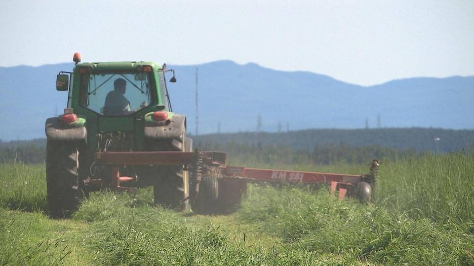 Un agriculteur fauche son champ de foin par une journée de chaleur.