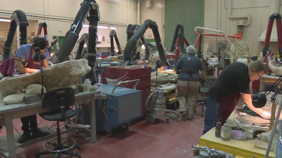Trois scientifiques travaillent sur des fossiles.