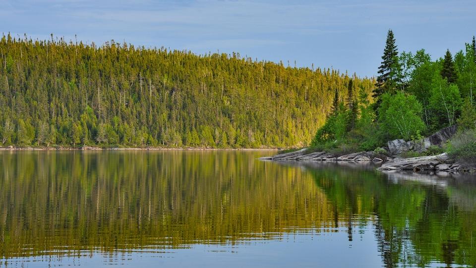 Un lac paisible avec la forêt boréale en arrière-plan.