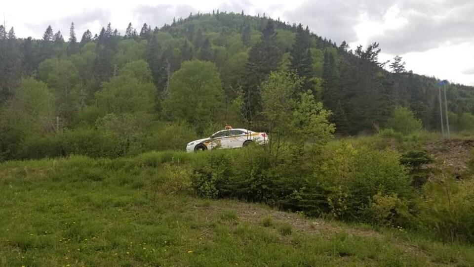Une voiture de police en secteur forestier