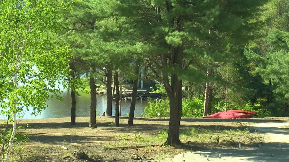 Un kayak est placé près d'un lac, aux abords d'une forêt.