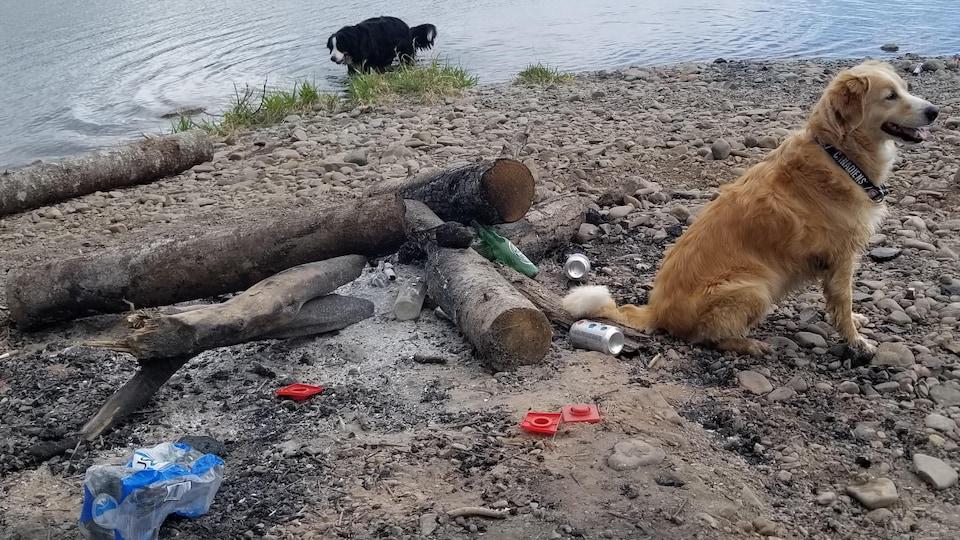 Un feu de grève avec des déchets devant un lac