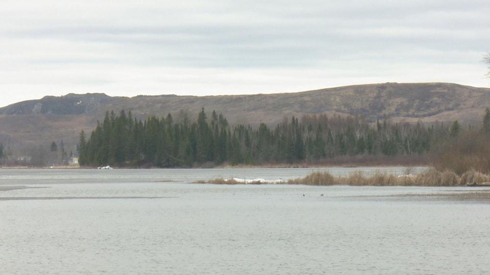 Un lac entouré d'arbres.