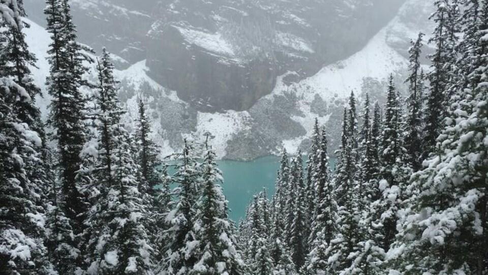 Vue du lac Louise au parc national Banff.