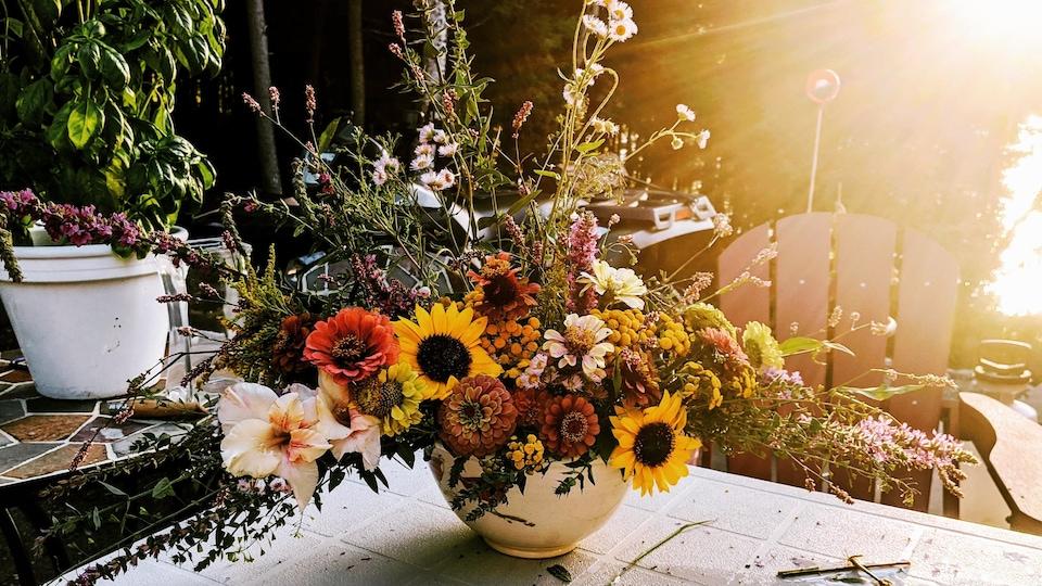 Des fleurs fraîches cultivées et préparées par Catherine Brassard, de la ferme florale Les Effleurés, Rimouski. Les fleurs sont déposées dans un pot sur une table et le soleil les éclaire par derrière.