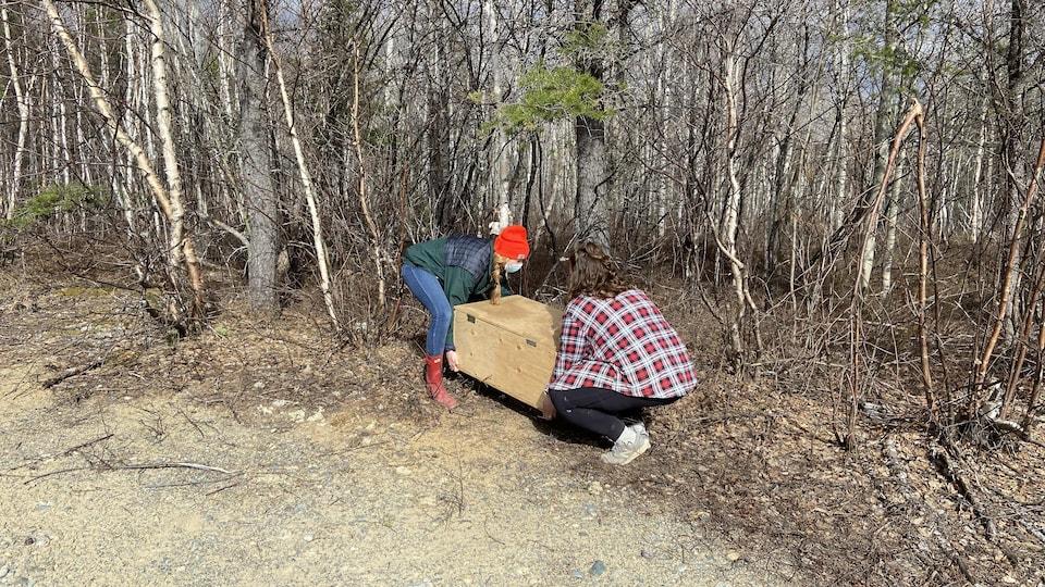 Deux jeunes femmes déposent une boîte en bois en bordure de la forêt.