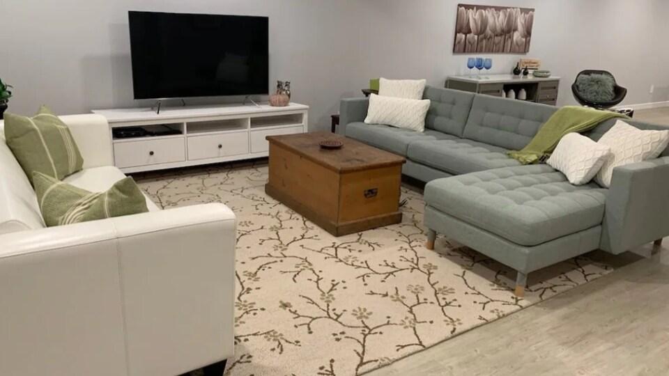 Une chambre avec des meubles : sofa, lit, télé, tapis. Un style moderne aux tons froids.