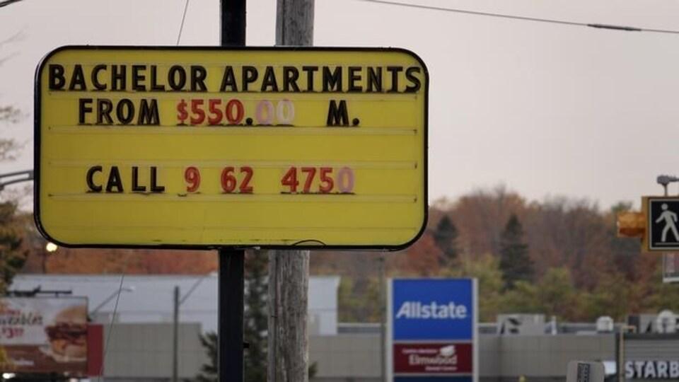 Une annonce pour un logement de type bachelor.