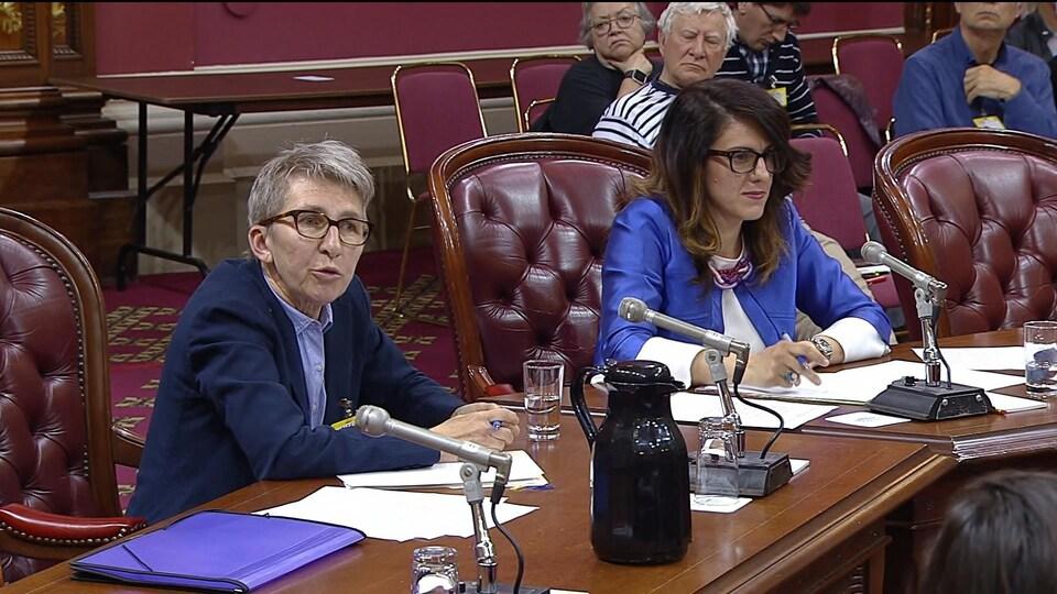 Louise Mailloux et Djemila Benhabib, lors des consultations particulières sur le projet de loi 21.