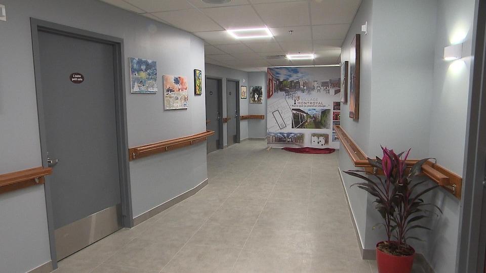 Un couloir avec une série de portes et des cadres au mur et une plante.