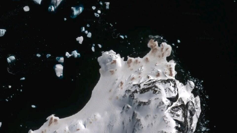 Les excréments des manchots Adélie (Pygoscelis adeliae) sont visibles de l'espace.