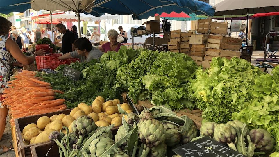 Un étal de légumes : frisées, artichauts, bottes de carottes,...
