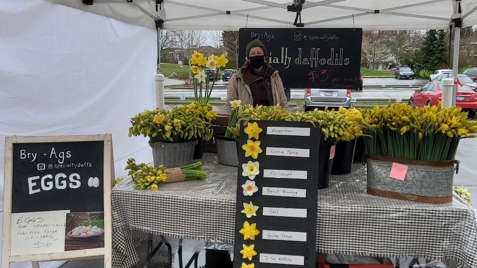 Une fleuriste vend des jonquilles.