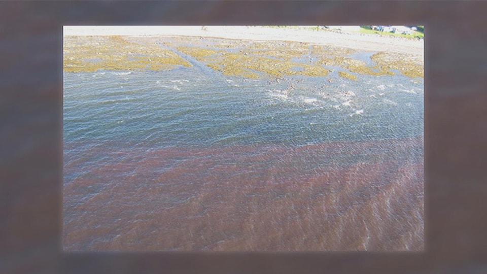 L'eau du fleuve rougeâtre.