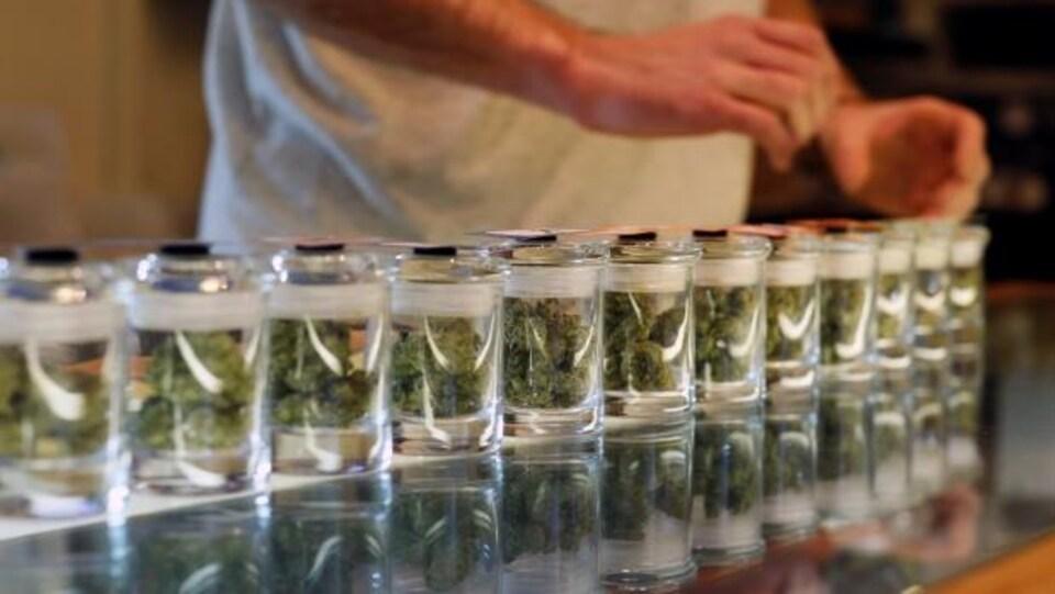 Le cannabis est dans des pots de verre.