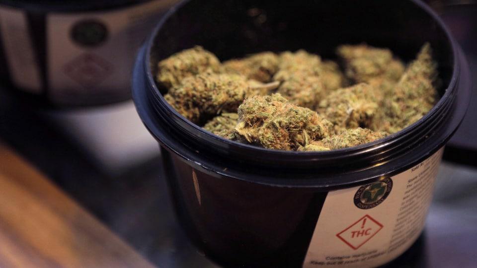 Marijuana séchée