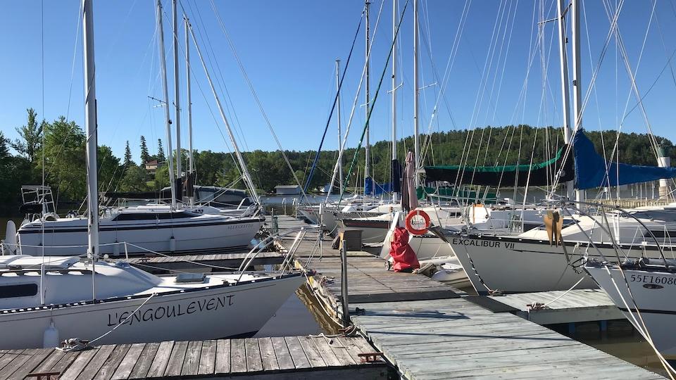 De plus en plus d'adeptes de la voile pratiquent leur loisir sur le lac Témiscamingue.