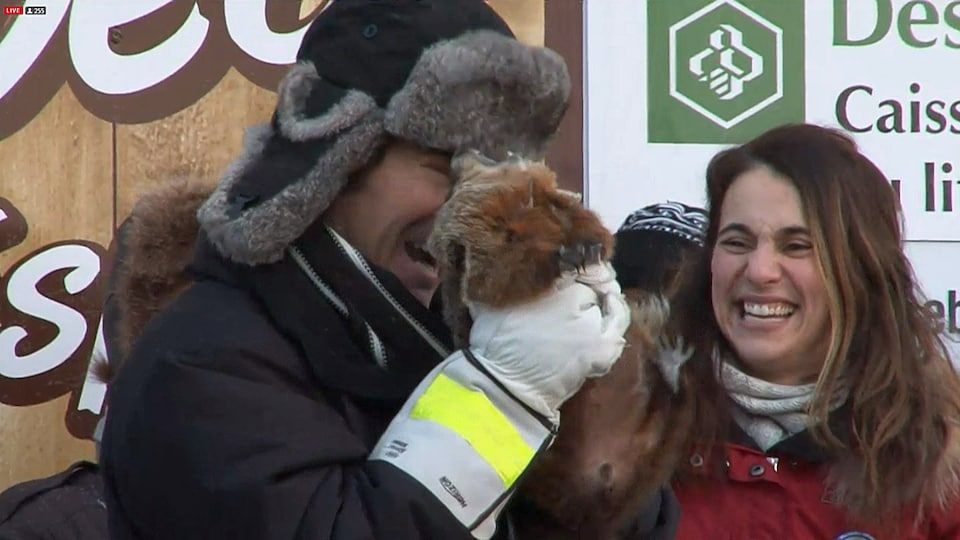 Nos marmottes prédisent en majorité une fin rapide de l'hiver — Printemps hâtif
