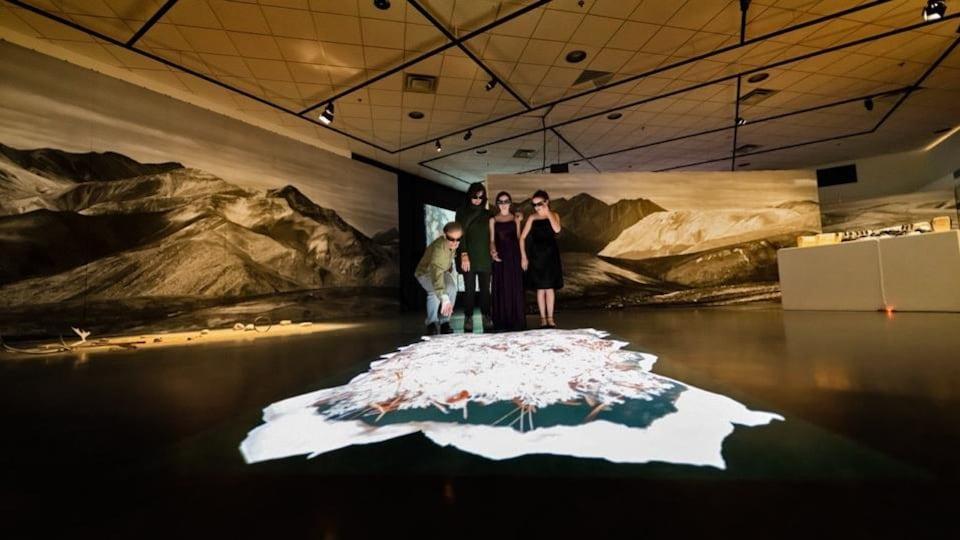 Quatre visiteurs observent avec des lunettes 3D un élément de l'exposition de Marten Berkman.
