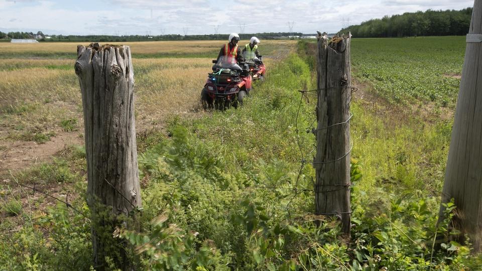 Deux policiers sur des véhicules tout-terrain cherchent dans un champ.