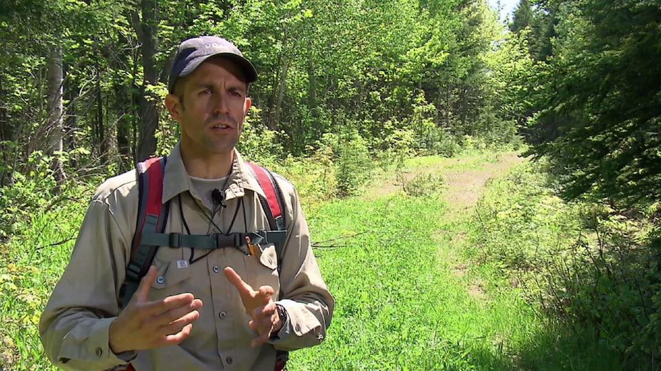 On voit M. St-Laurent qui parle à la caméra. En arrière-plan, on voit un ancien chemin forestier bordé de feuillus et de conifères.
