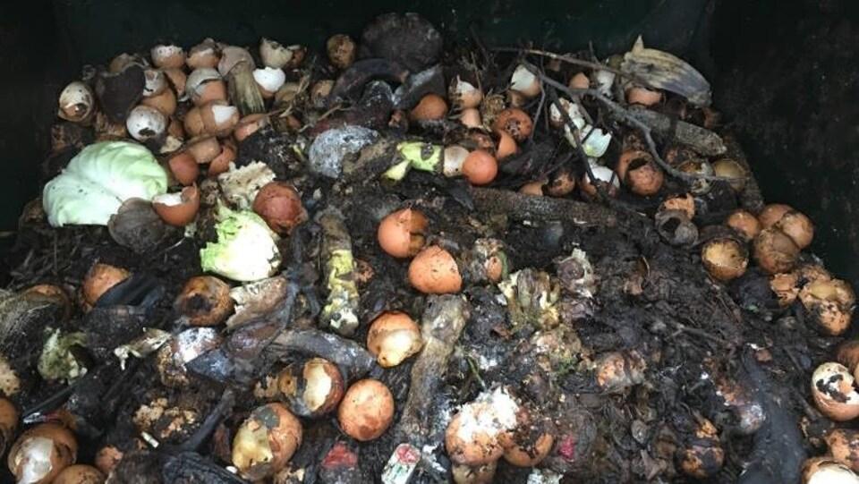 un tas de matières organiques, patates, coquilles d'oeufs, salades...