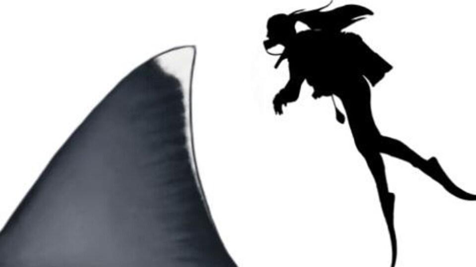 Représentation artistique de l'aileron dorsal d'un mégalodon de  et d'un humain de 1,65 m.
