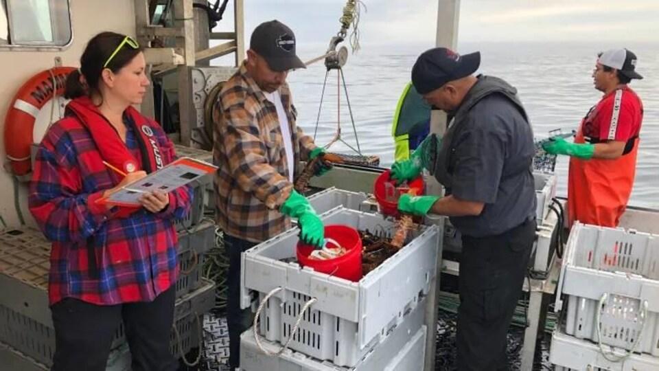 Crayon à la main, Megan Bailey supervise des gens qui trient du homard sur un bateau.