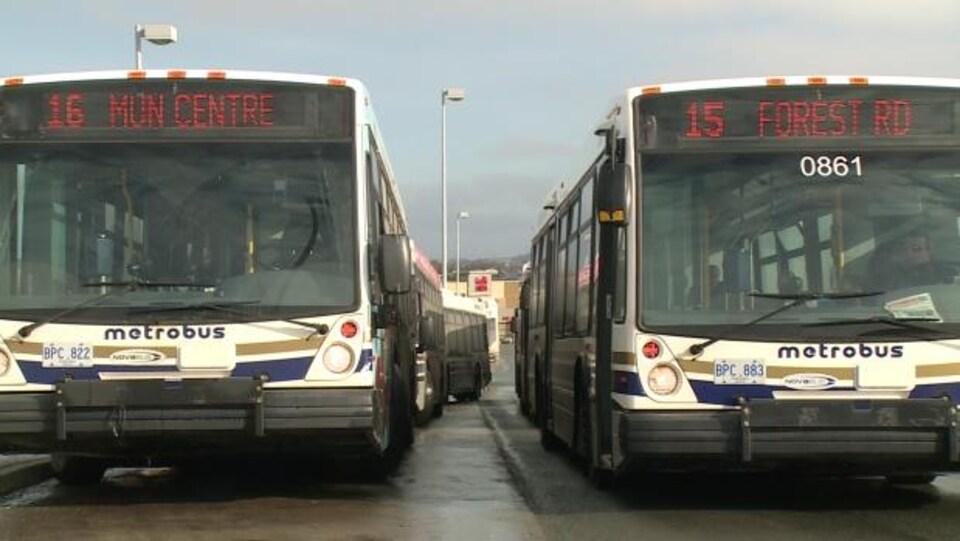 Deux autobus Metrobus