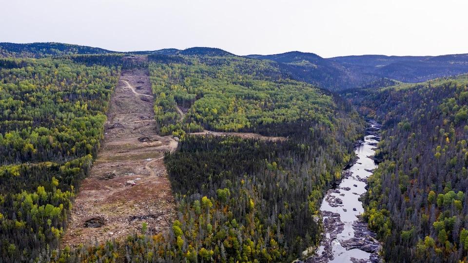 Une ligne de déboisement dans une forêt avec une rivière l'automne.