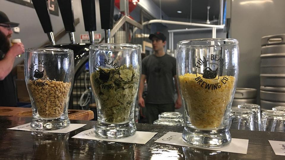 La microbrasserie Full Beard Brewing de Timmins utilise différentes sortes de houblon pour fabriquer ses bières artisanales.