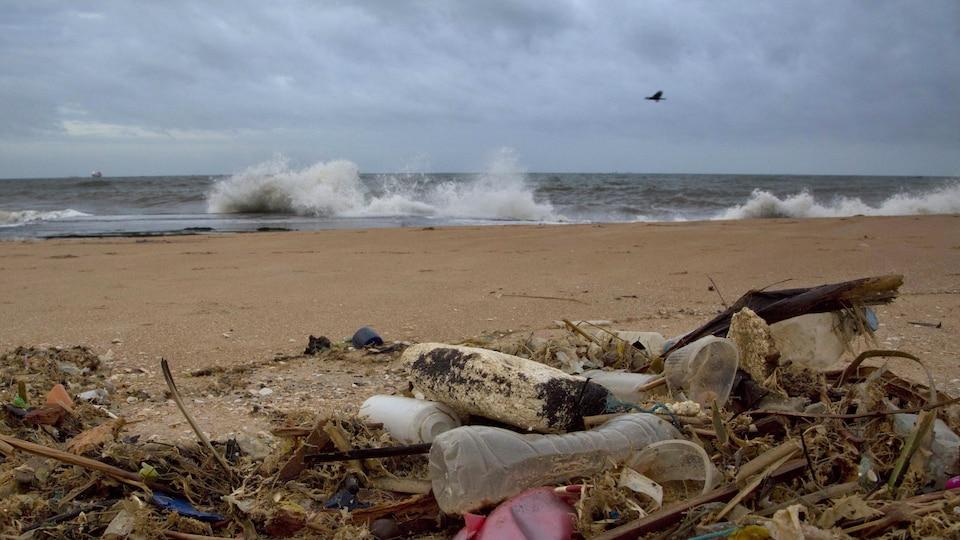 Des détritus en plastique sur une plage agitée.
