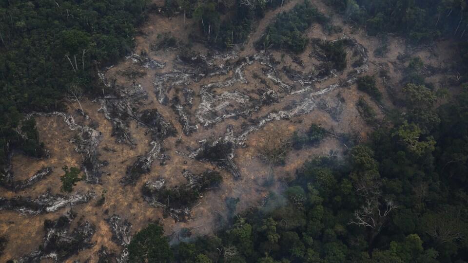 Vue aérienne d'une parcelle déboisée de l'Amazone dans la forêt nationale de Bom Futuro à Porto Velho, État de Rondonia au Brésil