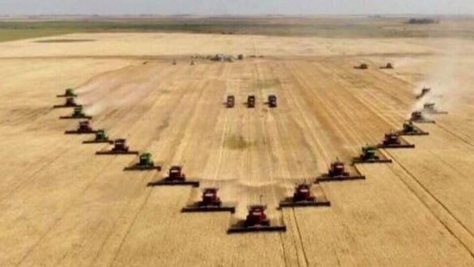 """20 moissonneuses-batteuses alignées en forme de """"V"""" dans un champ."""