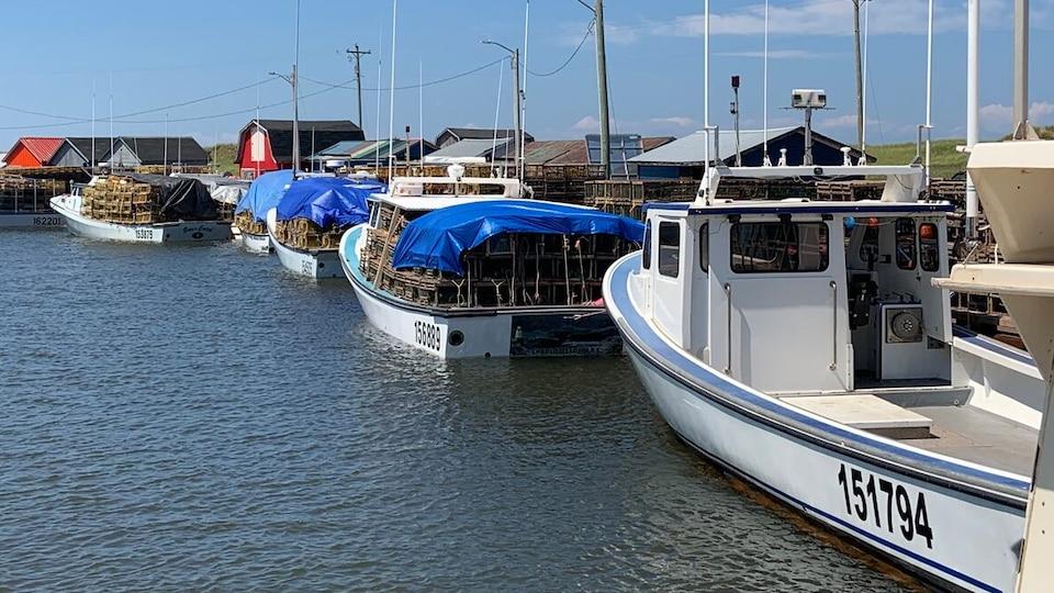 Des bateaux de pêche chargés de casiers à homard amarrés à un quai.
