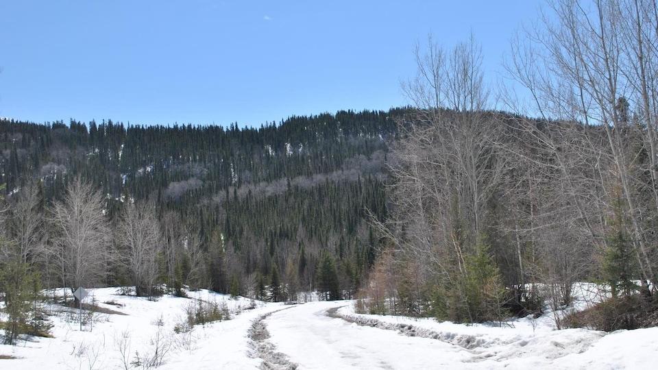 Un chemin dans la neige vers une montagne l'hiver.