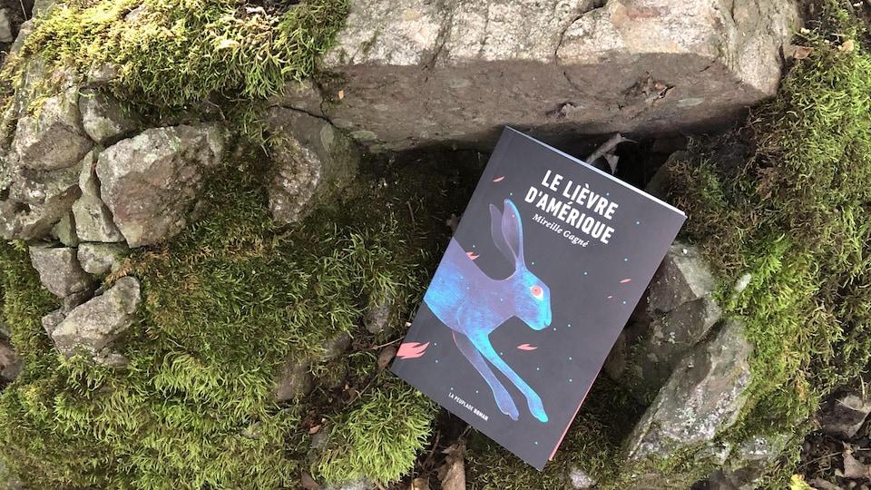 Le livre, sur lequel figure le devant d'un lièvre en mouvement, est posé entre mousse et pierre, devant ce qui semble être l'entrée d'un terrier.
