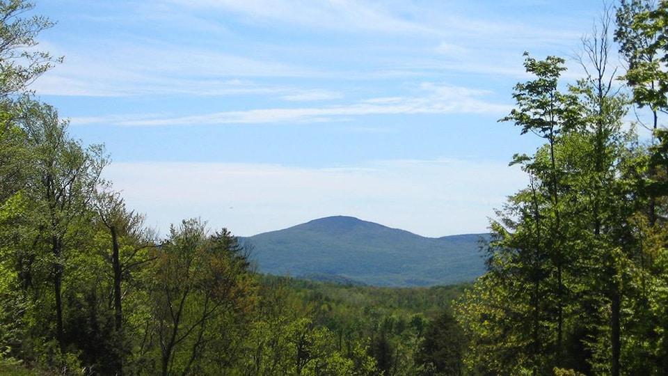 Vue sur le mont Foster.